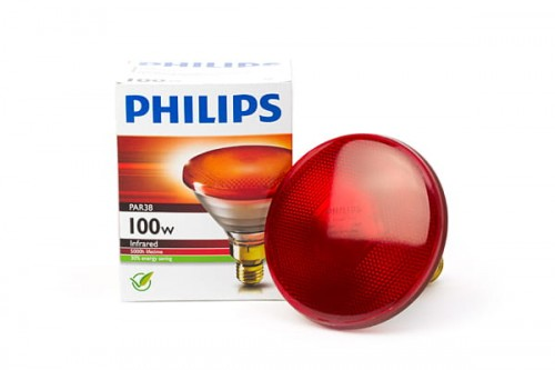 Promiennik PHILIPS